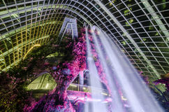 Cloud Forest Dome at Garden by the bay. Singapore – 25 March 2016: Tropical mountain along with plants and water fall in Cloud Forest Dome at Garden by the Royalty Free Stock Photo