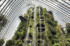 Cloud Forest Dome, Garden by the Bay, Singapore Stock Photos