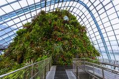 Cloud Forest Dome at Gardens by the Bay in Singapore Royalty Free Stock Photo