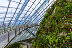 Cloud Forest Dome at Gardens by the Bay in Singapore Royalty Free Stock Image