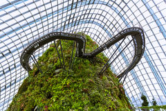 Cloud Forest Dome at Gardens by the Bay in Singapore Royalty Free Stock Photos