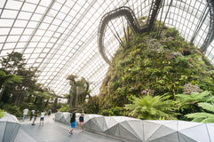 Cloud Forest & Flower Dome at Gardens by the Bay Stock Images