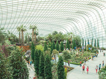 Cloud Forest & Flower Dome at Gardens by the Bay Stock Photos