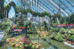 Cloud Forest, Gardens by the Bay Royalty Free Stock Photos