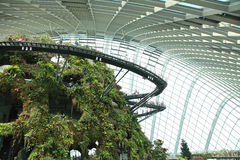 Cloud Forest, Gardens by the Bay. Royalty Free Stock Photography