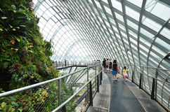 Cloud Forest at Gardens by the Bay in Singapore Royalty Free Stock Photography