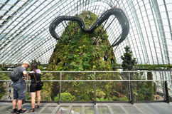 Cloud Forest at Gardens by the Bay in Singapore Stock Images