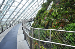 Cloud Forest at Gardens by the Bay in Singapore Royalty Free Stock Image