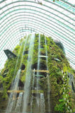 Cloud Forest, Gardens by the Bay. Royalty Free Stock Image