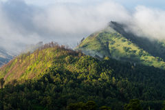 Cloud forest hill mountain Royalty Free Stock Images