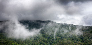 Cloud forest. Mountain with cloud and fog after rain Stock Photos