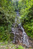 The cloud forest. A natural sanctuary north-west of Quito Royalty Free Stock Photo