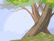 Cloud forest scene vector nature background Stock Photography
