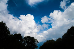 Cloud and forest shade.On the blue sky. Stock Photography