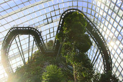Cloud Forest, Singapore. A view from astonishing interior of the Cloud Forest in Gardens by the Bay - Marina Bay Sands, Singapore Stock Photography
