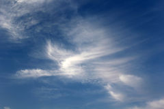 Cloud in the form of a bird Stock Photography