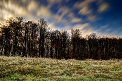 Cloud formation over forest royalty free stock photos