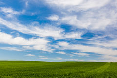 Cloud formations over a green field Royalty Free Stock Image