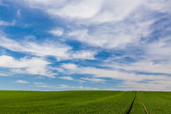 Cloud formations over a green field Stock Photo