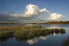 Cloud heaven reflection. Clouds reflection in water of National Park De Groote Peel in the Netherlands royalty free stock image