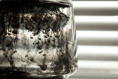 A cloud of ink in a transparent glass cup with clear water against the backdrop of a striped screen with rays of light. Template,. Layout, background, texture stock images