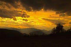 cloud jabłko kwiaty obszar łąkowego kształtuje charakter słońca drzewa Obrazy Royalty Free