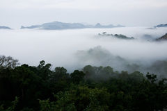Cloud layer mountain view rain forest Royalty Free Stock Photography