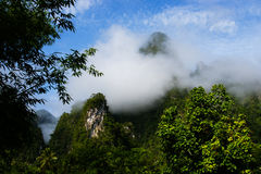 Cloud layer mountain view rain forest Stock Image