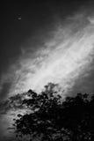 cloud marzycielskiego Obrazy Royalty Free