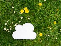 Cloud meadow dandelion Stock Photos