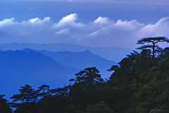 The cloud and mist of Sanqingshan mountain Stock Image