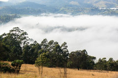 Cloud Mist Valley Landscape Stock Photo