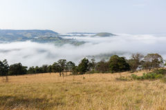 Cloud Mist Valley Landscape Royalty Free Stock Image