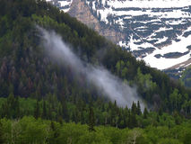Cloud on mntsid. Early morning mist rising on mountainside, American Fork Canyon, Utah Stock Image