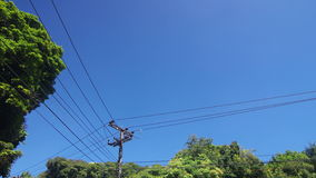 Cloud movement over the electrical line and pole stock video