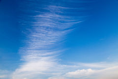 Cloud pattern many layer vertical on blue sky baclground Royalty Free Stock Image