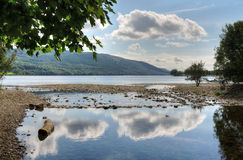 Cloud reflections in Coniston Water. And an overhanging tree in the English Lake District, Cumbria Royalty Free Stock Photography