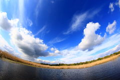 Cloud Scape Royalty Free Stock Image