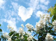 Cloud in the shape of a heart Royalty Free Stock Photo