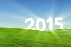 Cloud shaped number 2015 on meadow. Shining cloud shaped number 2015 on the green meadow Stock Images