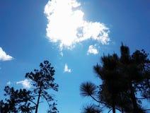 Cloud shield Royalty Free Stock Image