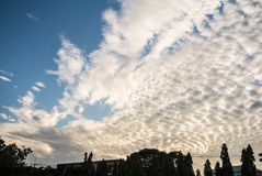 Cloud on the sky. Clouds on the sky in a beautiful evening Stock Image