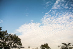 Cloud on the sky. Clouds on the sky in a beautiful evening Royalty Free Stock Photos