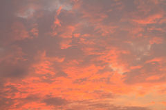 Cloud in sunset light Royalty Free Stock Image