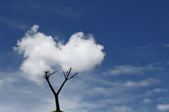 Cloud Tree Stock Photography