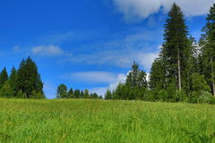 Cloud, Trees,  Sumava, Boehmerwald, Zelezna Ruda, Czech Republic Royalty Free Stock Photography