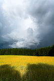Cloud, wood, meadow Stock Photography
