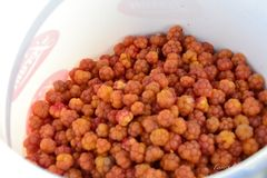 Cloudberry Stock Images