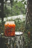 Cloudberry jam on the forest stock image