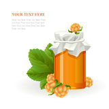 Cloudberry jam jar with fresh berry on white stock illustration